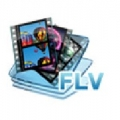 Web FLV Player Pro icon