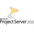 Project Server 2010 icon
