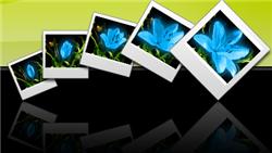 Hướng dẫn cách tạo ảnh động trực tuyến bằng Gickr