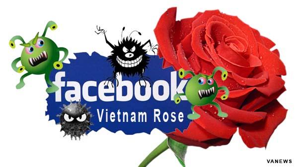 Hướng dẫn phóng chống virus Vietnam Rose hiệu quả